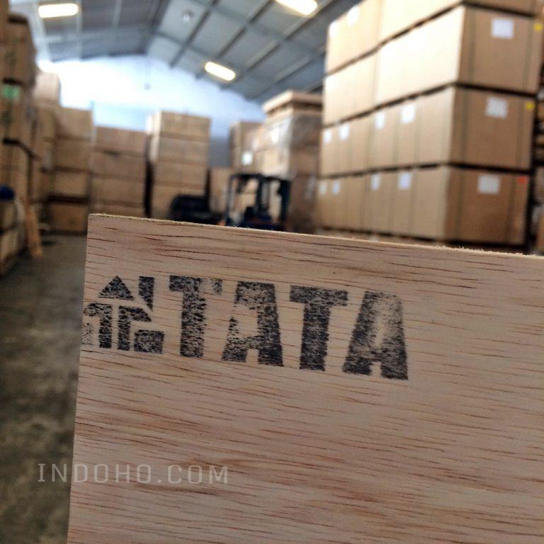 Triplek Plywood Tata Full Sengon